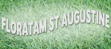 Floratam St Augustine