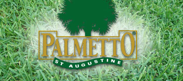 Palmetto® St. Augustine