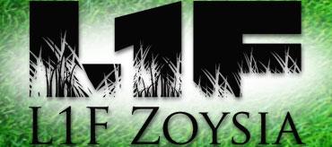 L1F Zoysia